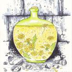 одуванчики вино графика рисунок
